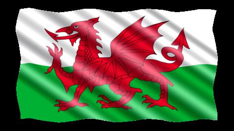 Wales Red Dragon Flag in TrueKolor Wrinkle Free Fabric.