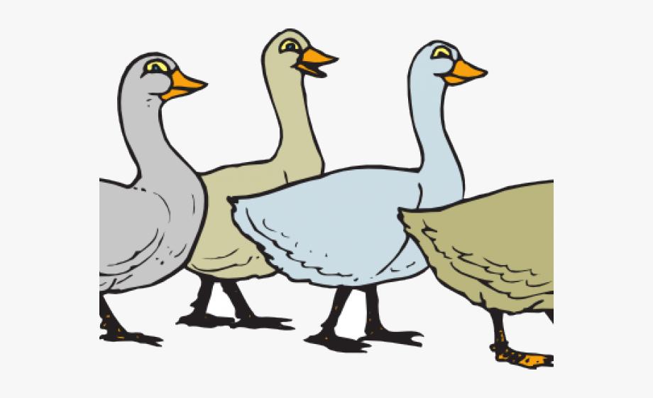 Goose Clipart Duck Walk.