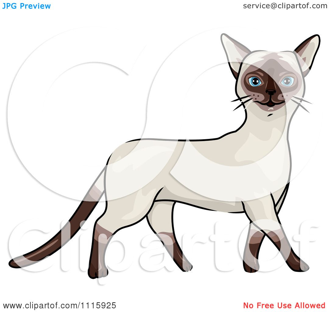 Clipart Happy Siamese Cat Walking.
