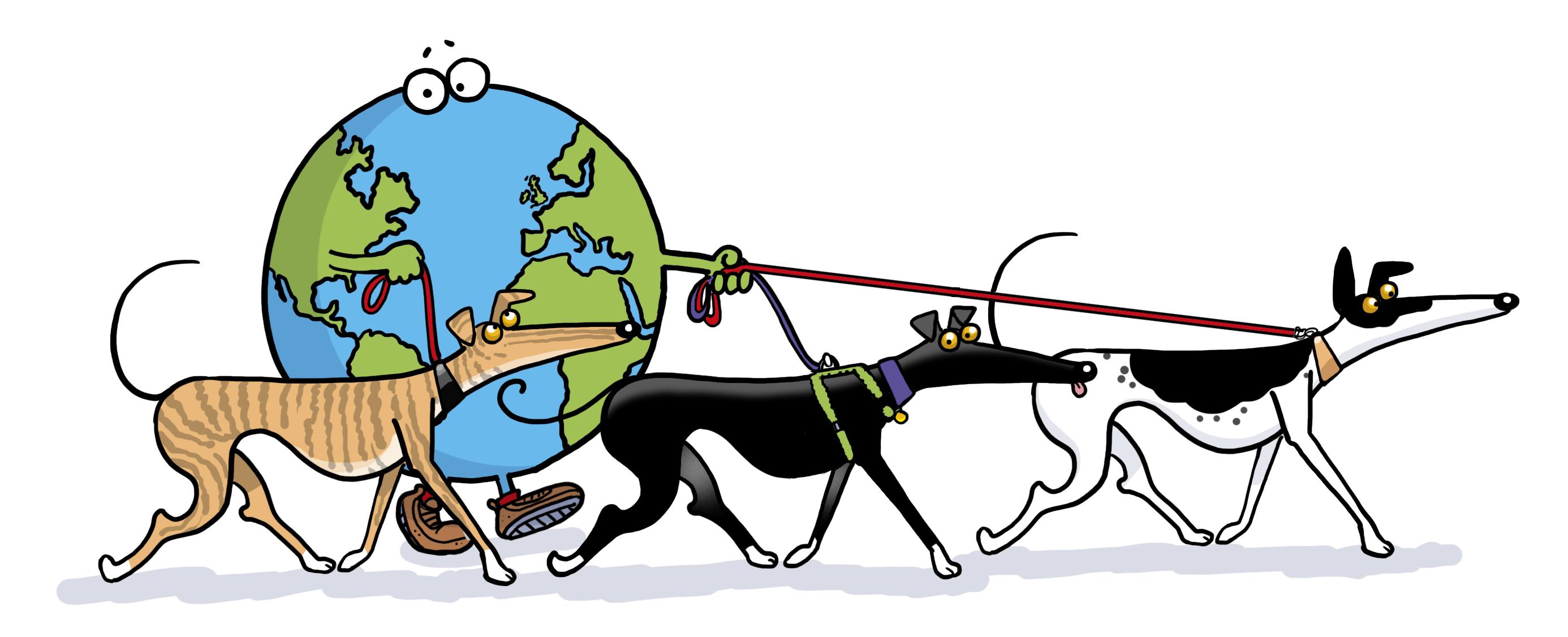 Greyhound & Sighthound Walking Groups.