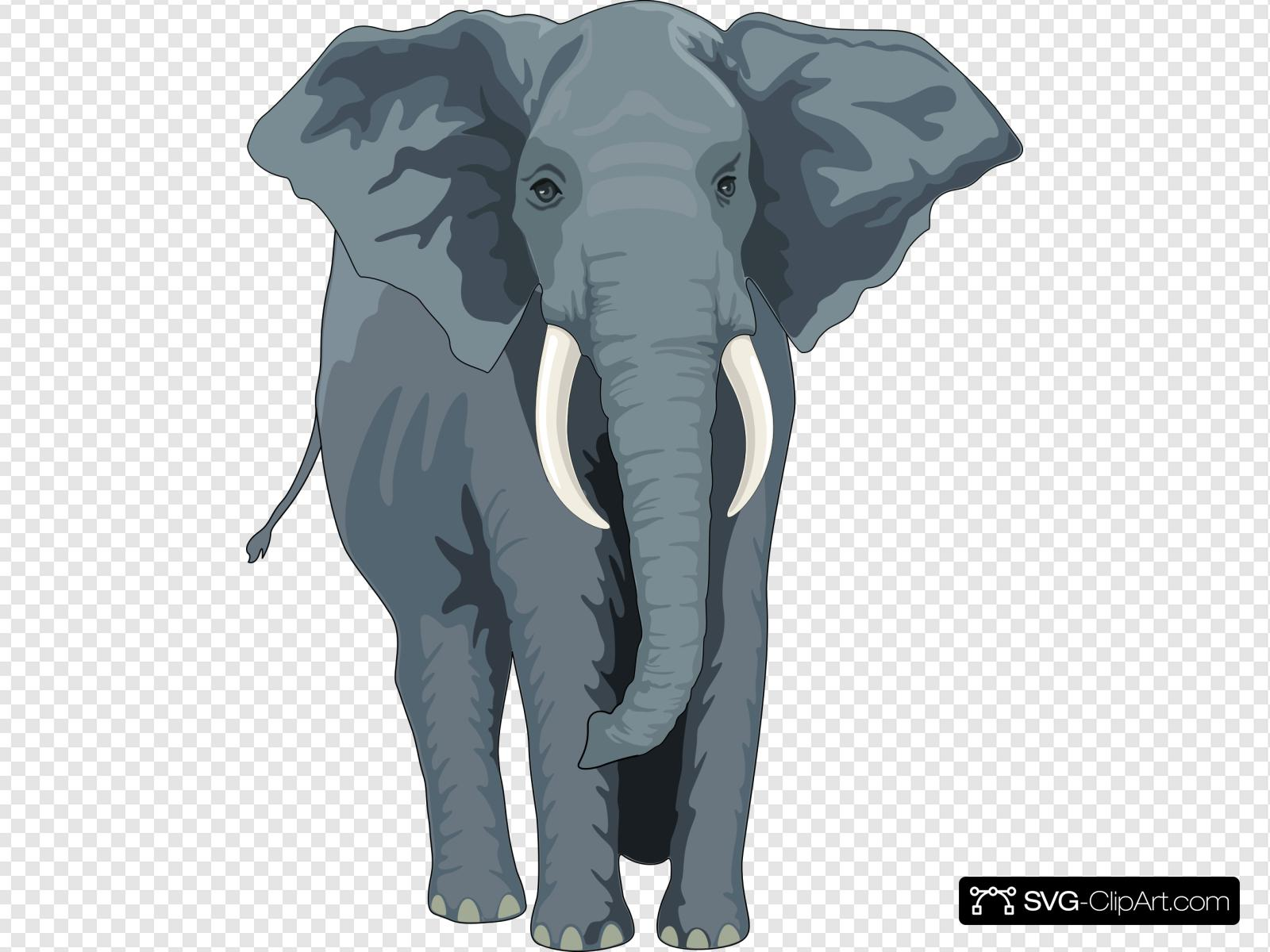 Walking Elephant Front View Clip art, Icon and SVG.