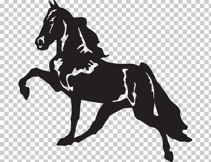 Tennessee Walking Horse Decal Racking Horse Bumper Sticker PNG.