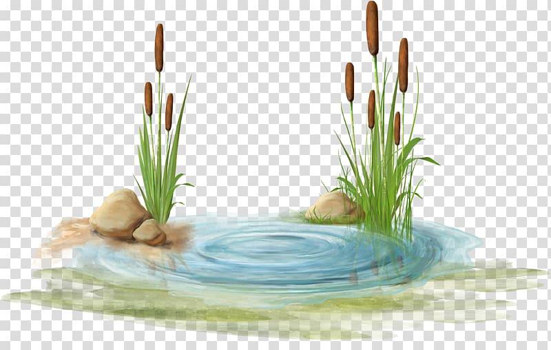 Flowers on body of water, Swamp , Watermark blue stone.