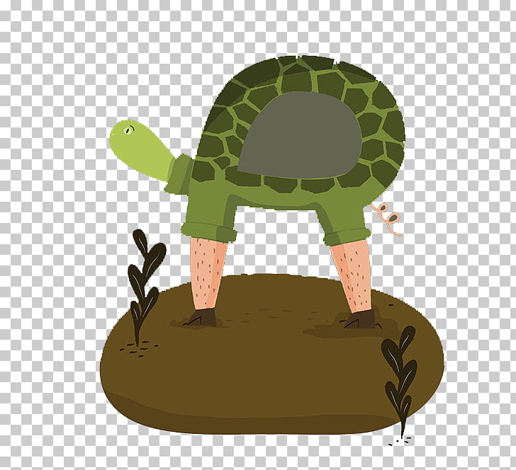 Turtle Reptile Leg Walking, Long legs of the turtle PNG.