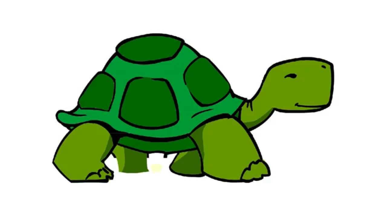 Tortoise And The Hare Clipart at GetDrawings.com.