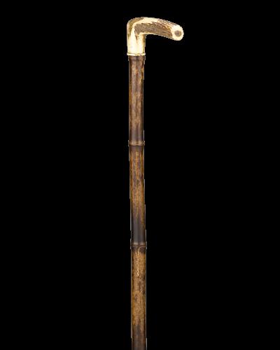 Walking stick PNG.