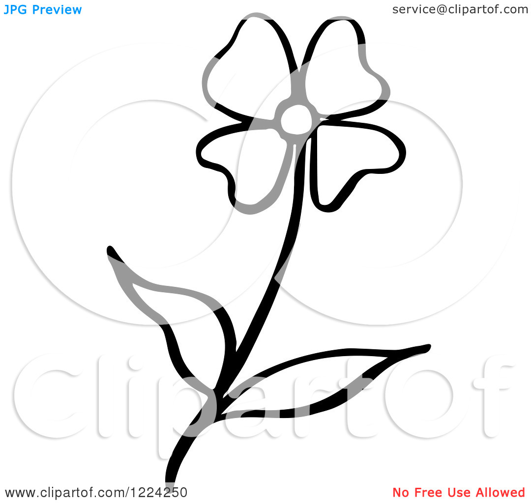 Clipart of a Black and White Flower.