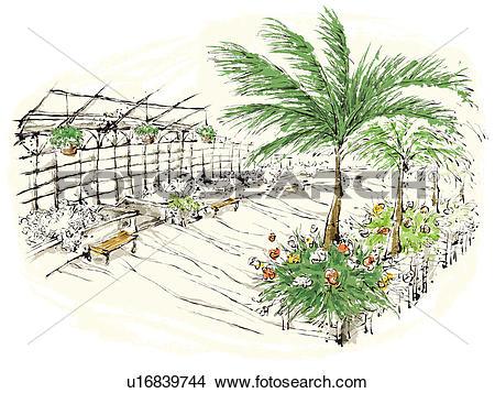 Drawings of Plants in nursery u16839744.