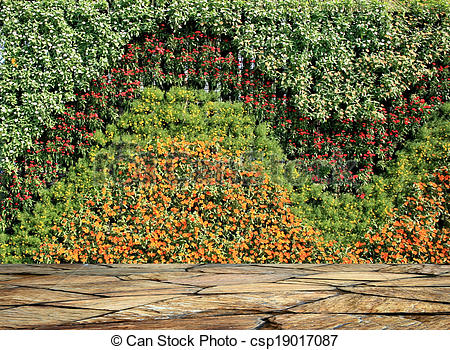 Pictures of flower and plant wall vertical garden csp19017087.