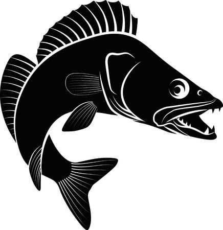 443 Walleye Stock Vector Illustration And Royalty Free Walleye Clipart.