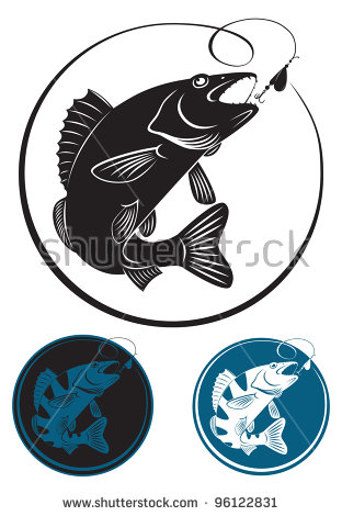 Walleye Stock Images, Royalty.