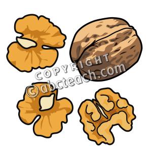 Walnut Clip Art.