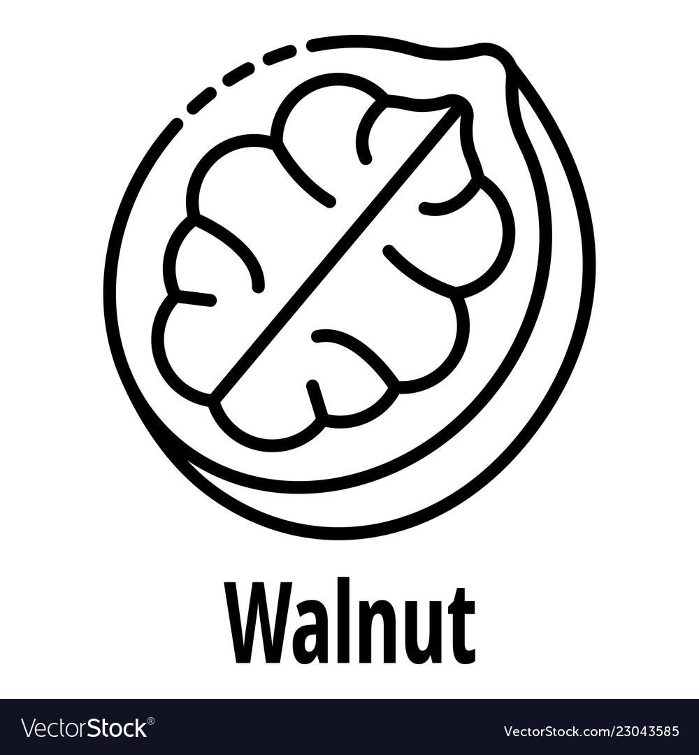 Walnut icon outline style.