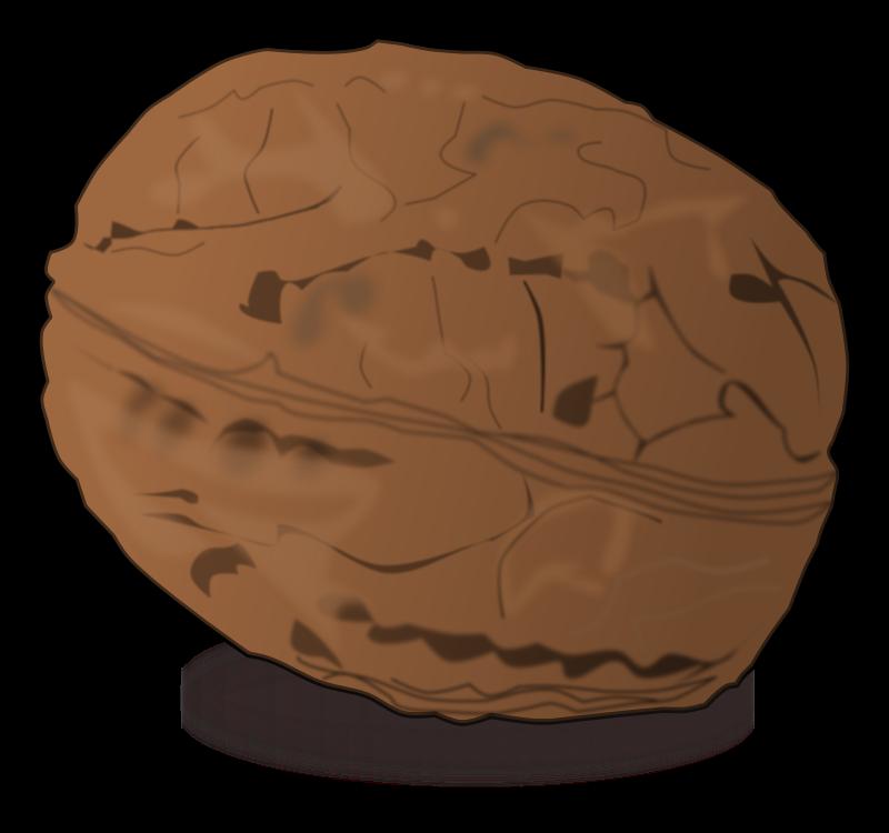 Free Clipart: Shaded walnut.