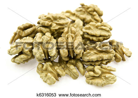 Stock Photo of Many Walnut Kernels k6316053.