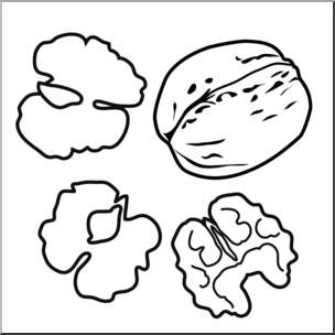 Walnut Coloring Page at GetDrawings.com.