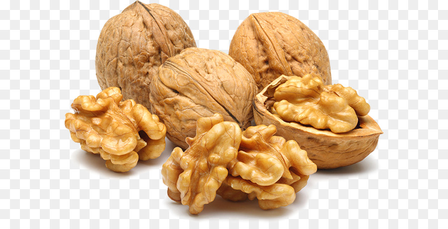 Walnut Tree png download.