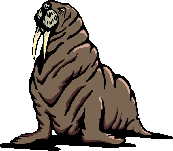 Wrinkled Walrus Clip Art at Clker.com.