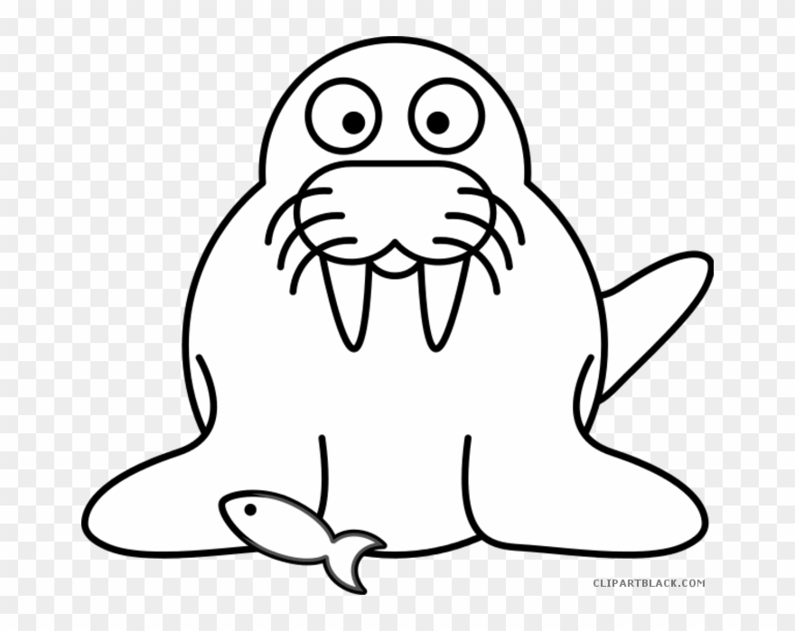 Walrus Clipart Black And White.