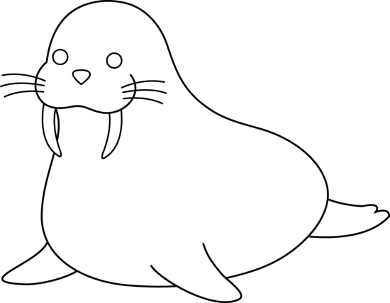 Walrus clipart black and white free images.