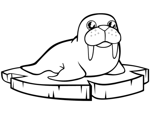 Cartoon Walrus on the Ice Floe coloring page.