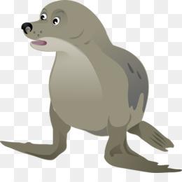 Free download Sea lion Walrus Das Walross Pinniped Clip art.