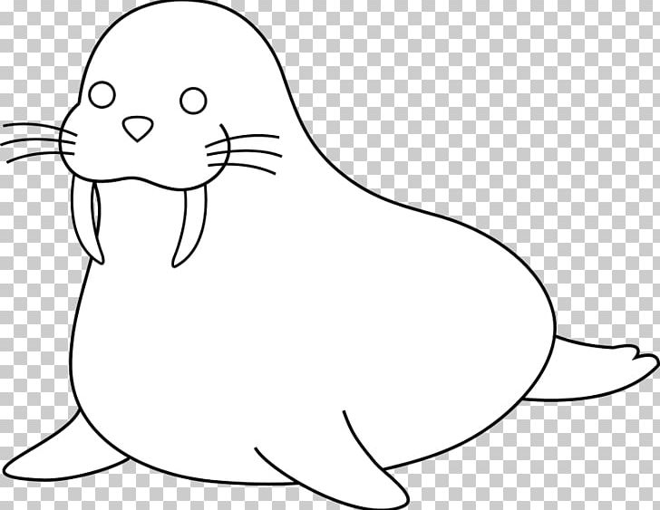 Walrus Coloring Book Puppy Child PNG, Clipart, Adult, Animal.