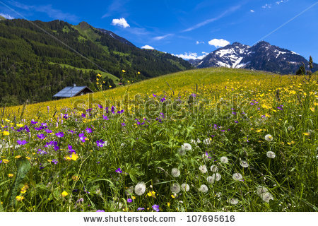 Kleinwalsertal Stock Photos, Images, & Pictures.