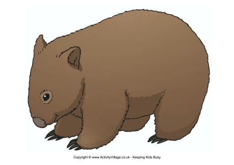 Wombat clipart 2 » Clipart Station.