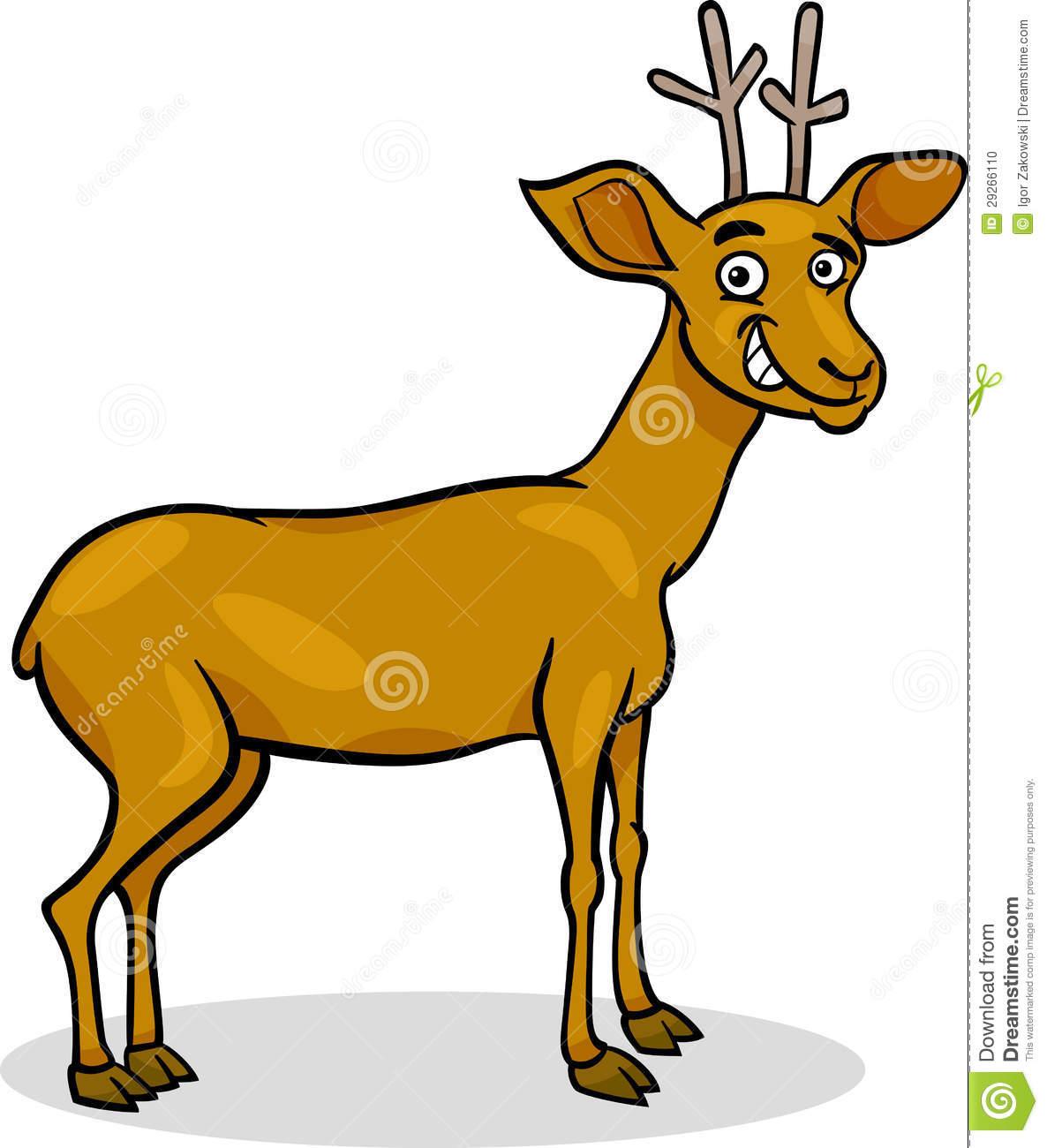 Wild Deer Cartoon Illustration Stock Photo.