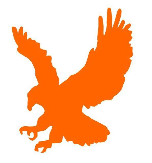 ncaa1103 Auburn Tigers War Eagle Logo Die Cut Vinyl Graphic Decal Sticker  NCAA.