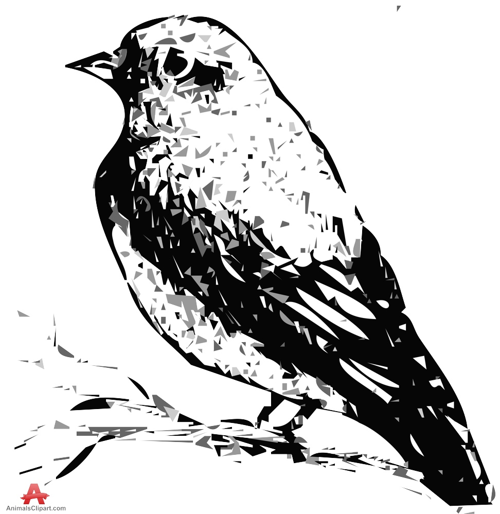 Pine Warbler Vector Traced Clipart.