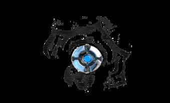 Clan Emblem.