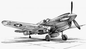 Hawk Clip Art Download.