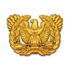Warrant officer eagle rising clipart 3 » Clipart Portal.