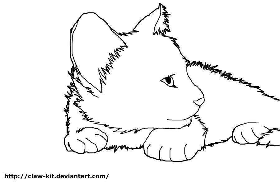 Cat Line Art.