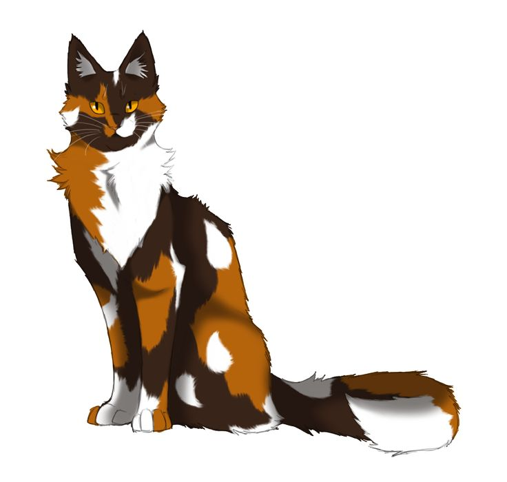 17 Best images about warrior cats : ) on Pinterest.