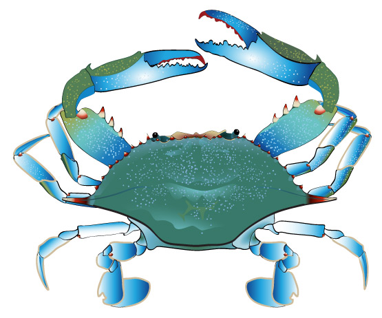 Classroom Stories.