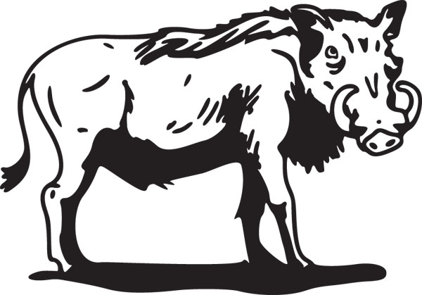 Warthog Graphic Mammal Art For Custom Gifts & Products.