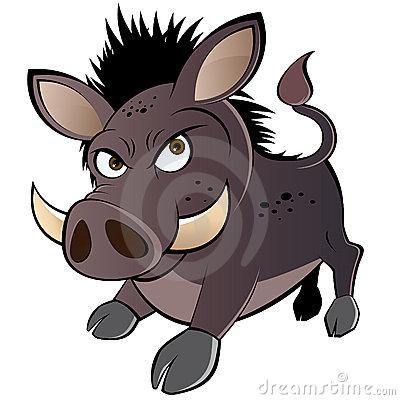 Warthog Stock Illustrations.