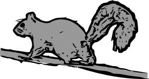Free Wary Squirrel Clipart, 1 page of Public Domain Clip Art.