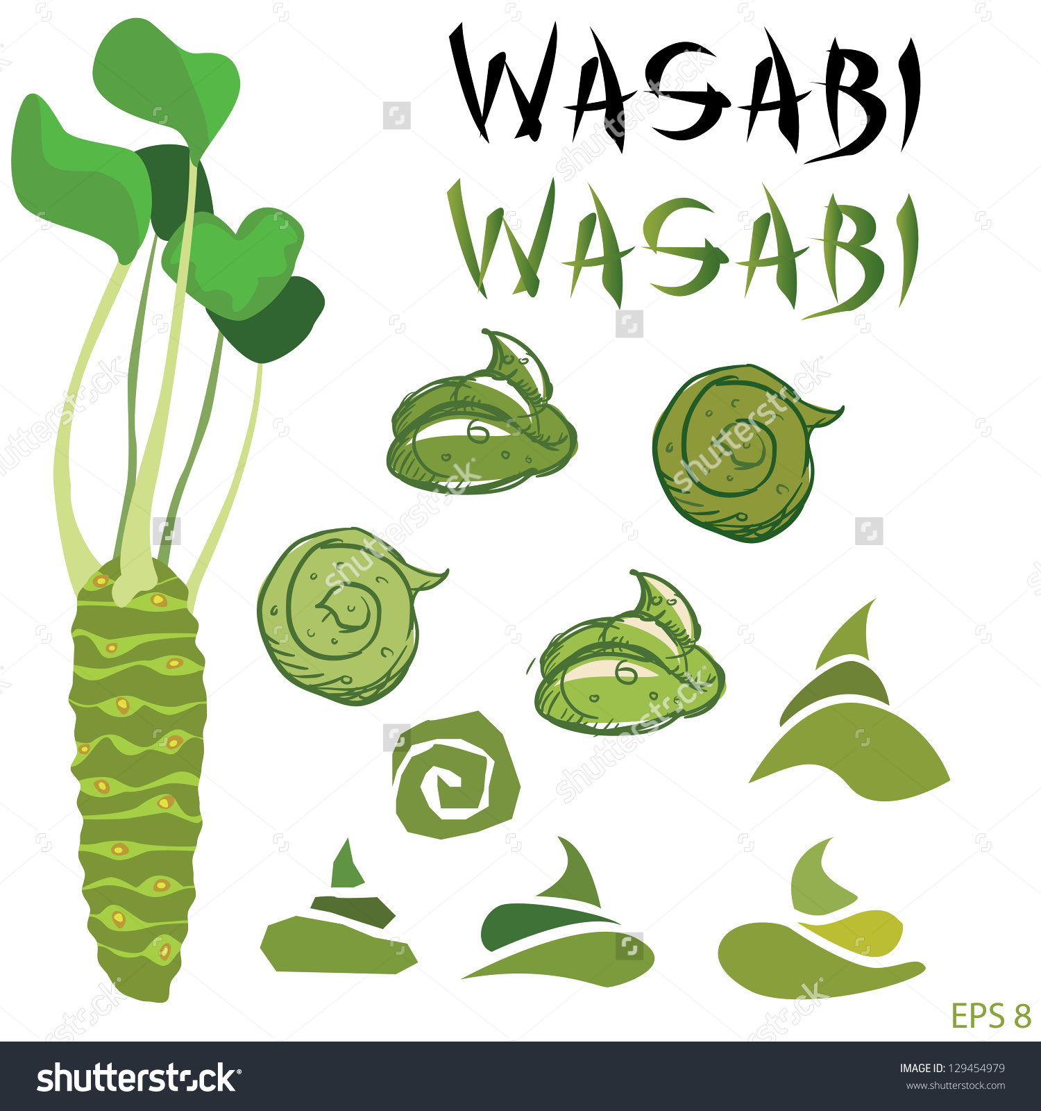 Wasabi Root Plant Set Vector Stock Vector 129454979.