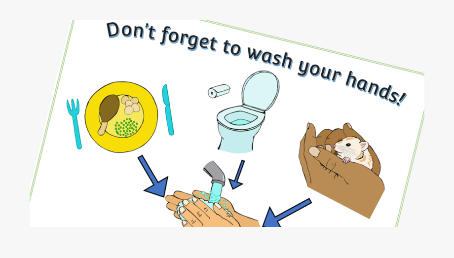 Free Wash Hands Poster Early Years Printable Resource.