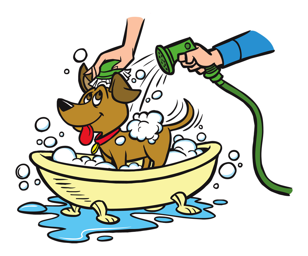 Dog Being Washed Clipart.