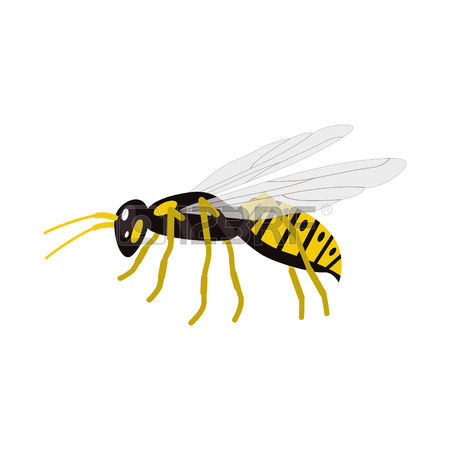 12,869 Wasp Stock Vector Illustration And Royalty Free Wasp Clipart.