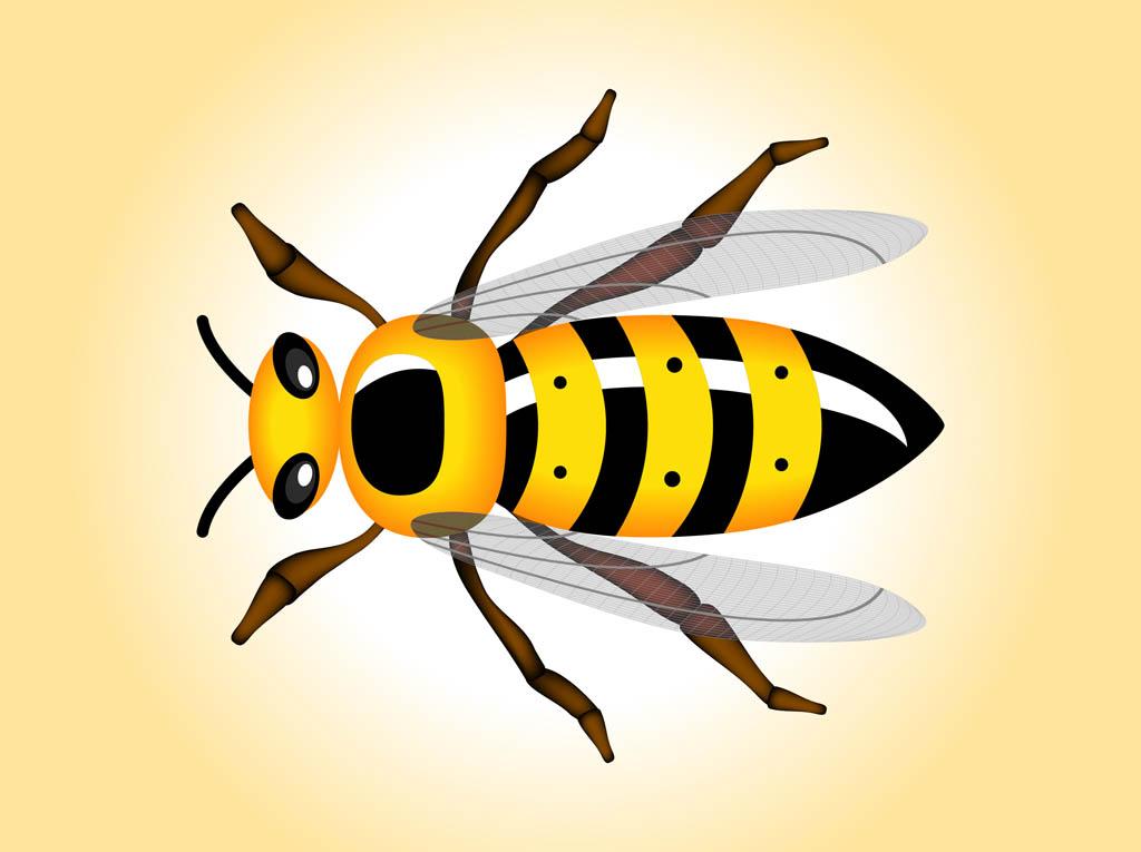 Wasp cliparts.