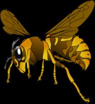 Hornet Wasp Clip Art Download 32 clip arts (Page 1).