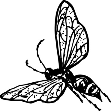 Wasp vector free free vector download (12 Free vector) for.