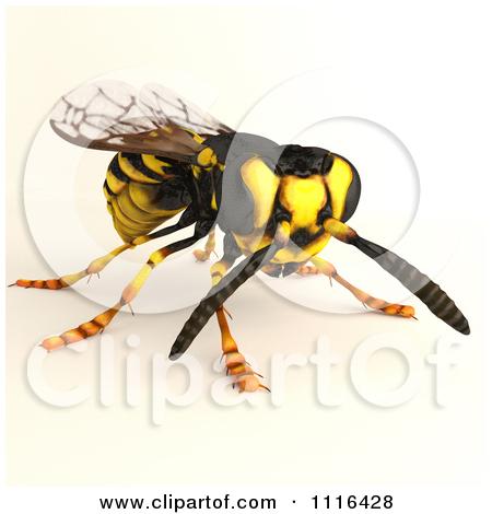 Watch more like Shadow Queen Bee Clip Art.