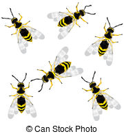 Waspish Stock Illustrations. 7 Waspish clip art images and royalty.